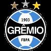Гремио Порту-Алегри (20)
