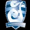 https://cdn.1xstavka.ru/genfiles/logo_teams/13095.png