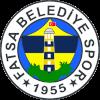 Фатса Беледиеси