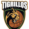 Тигриллос де Антиокия