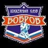 Бобров Воронеж
