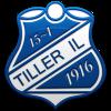 Тиллер (19)