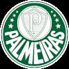 Палмейрас (жен)