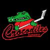 Крокодилес Гамбург