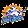 https://cdn.1xstavka.ru/genfiles/logo_teams/33991.png