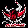 https://cdn.1xstavka.ru/genfiles/logo_teams/38329.png