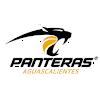 Пантерас де Агуаскалиентес