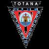 Олимпико Тотана