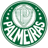 Палмейрас (20)