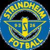 Стриндхейм (19)