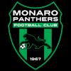 Монаро Пантерс (23)