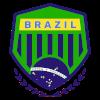 Бразилия (3x3)