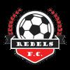 https://cdn.1xstavka.ru/genfiles/logo_teams/66ee4a4dc3589035faf13eb63849a905.png