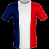 Франция (TSL)