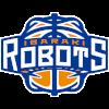 Ибараки Роботс