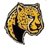 Leopards (Yellow)