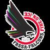 https://cdn.1xstavka.ru/genfiles/logo_teams/8056.png