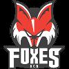 https://cdn.1xstavka.ru/genfiles/logo_teams/8062.png