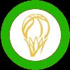 Astana (Green)