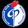 Факел Воронеж II