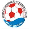 Повлтавска академия
