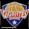 Гигантес де Гайана