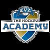 ЕВ Академи