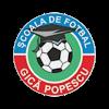 Академия Гика Попеску (19)