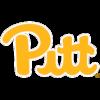 Питтсбург Пантерз (жен)